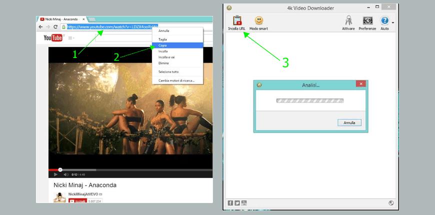 guida 4k videodownloader schermata 2