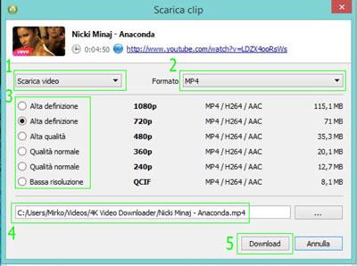 4k videodownloader guida 3