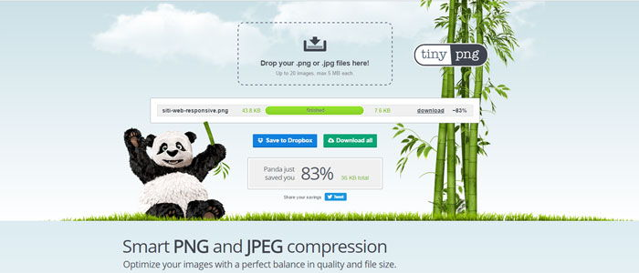 compressione immagini web